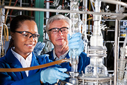 Chemical Engineers Working in Chemical Plant